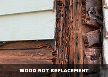Wood Rot Replacement